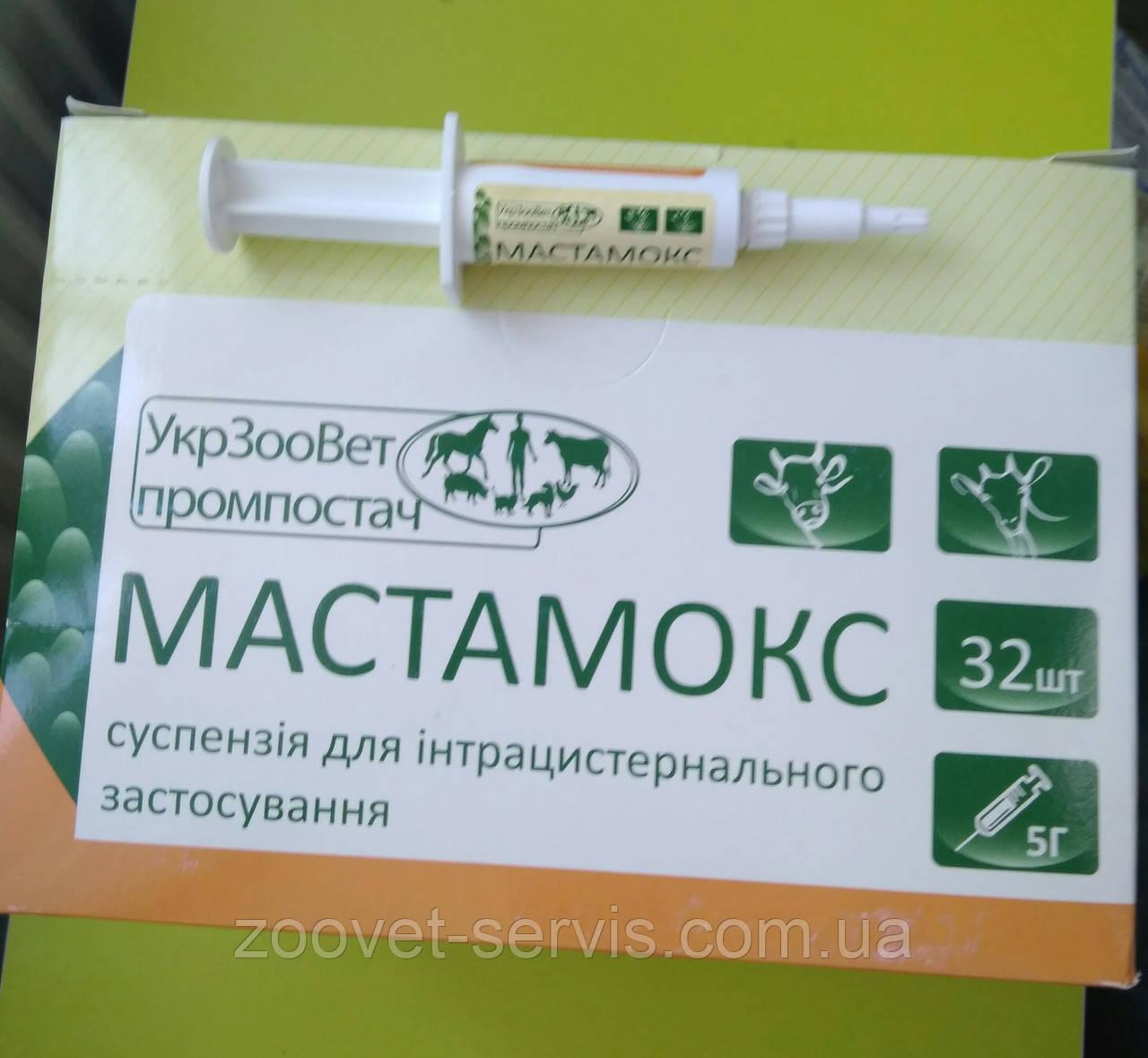 Мастамокс, шприц 5 г