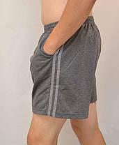 Шорты мужские трикотажные в больших размерах - 2 полосы, фото 3