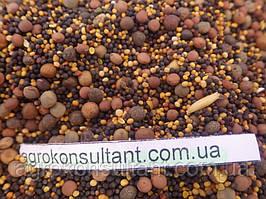 Сидератная смесь — зеленое удобрение, состав: горчица (трёх видов), рапс, люпин, вика, пелюшка)