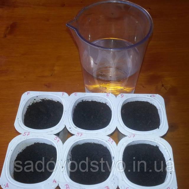 увлажнение почвы теплой водой