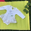 Боди с юбочкой для девочки 6-12-18-24 месяцев, фото 4