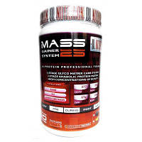 DL Nutrition Mass Gainer System 25 1300g (Шоколад)