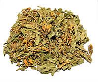 Вербейник обыкновенный трава