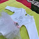 Боди с юбочкой для девочки 6-12-18-24 месяцев, фото 3
