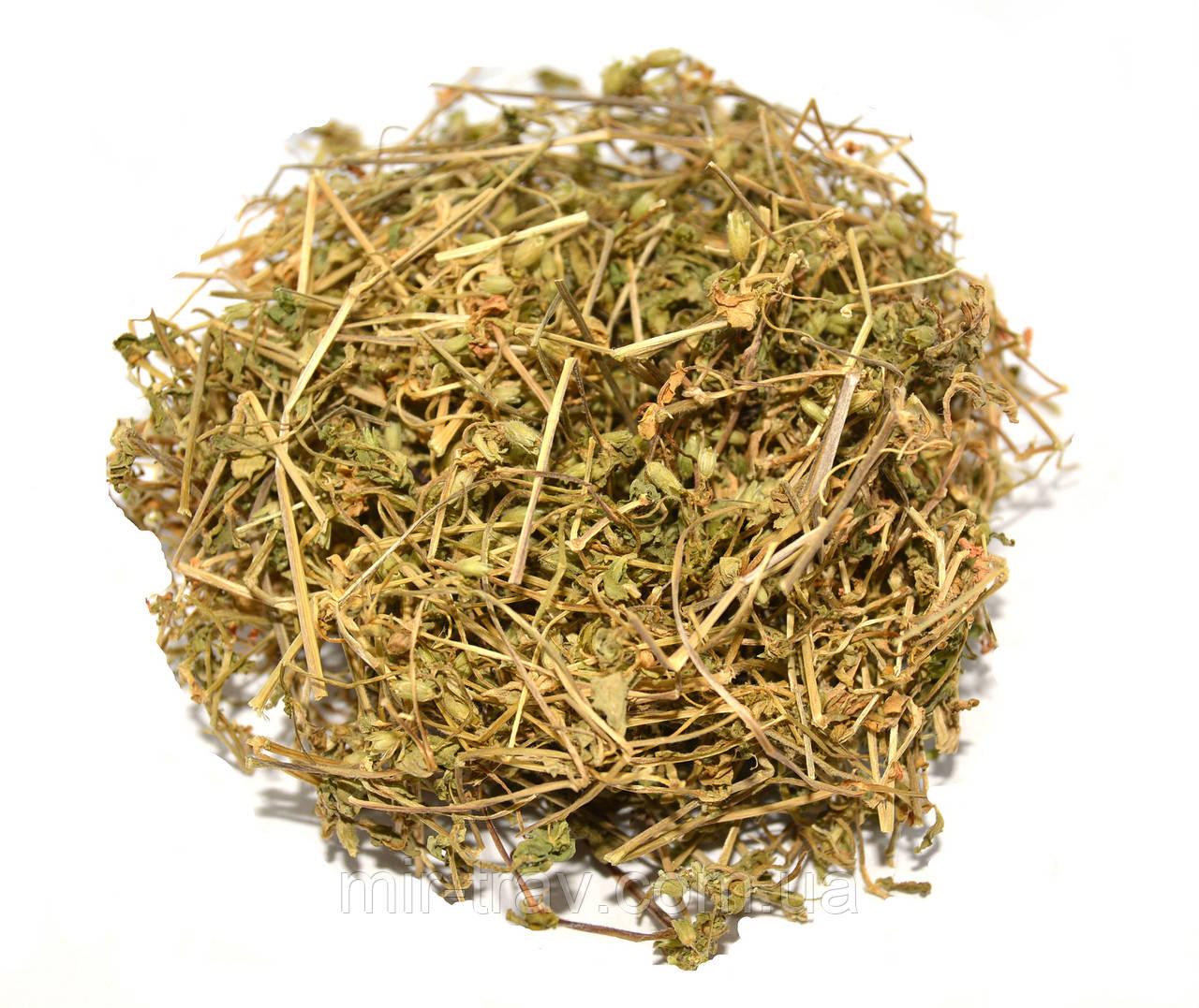Звездчатка средняя трава (мокрец) 100 г