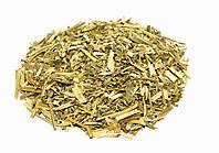 Лофант анисовый трава