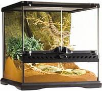 Стеклянный террариум Exo Terra Glas terrarium, 30х30х45 см
