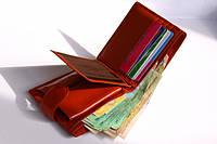 Как заставить кошелек приносить богатство?