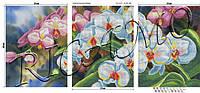 """Схема для вышивки триптиха """"Орхидеи"""""""
