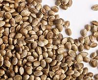 Семена конопли 500 г.