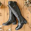 Женские кожаные сапоги на низком ходу. Bellini, фото 2