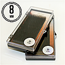 РЕСНИЦЫ I-BEAUTY PREMIUM, 20 ЛИНИЙ D 0.085 (8 мм), фото 2