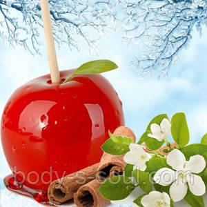 Косметические отдушки для мыла, свечей, косметики ручной работы Яблочные леденцы,Ваниль 0.6%