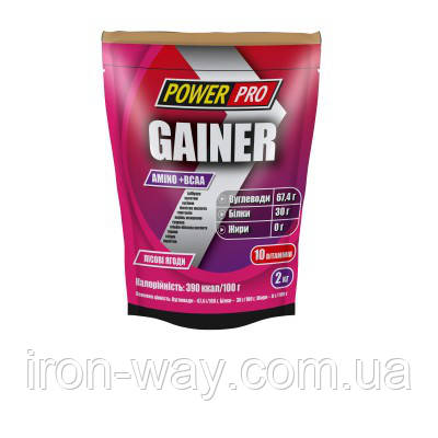 PowerPro Gainer 2000g (Лесная ягода)