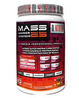 DL Nutrition Mass Gainer System 25 1300g (Ваниль)