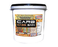 DL Nutrition Carb Mass Gain 5400 g (Ваниль)