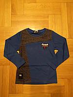 Реглан для мальчика оптом, Grace, 98-128 рр., Арт.B80937, фото 3
