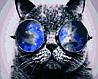 """Картина по номерам """"Кот в очках"""", 40x50 см., Домашнее искусство"""