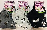 """Носки детские, подростковые зимние махровые девочка """"ВиАтекс"""" размер 21(35-36), ассорти, фото 1"""