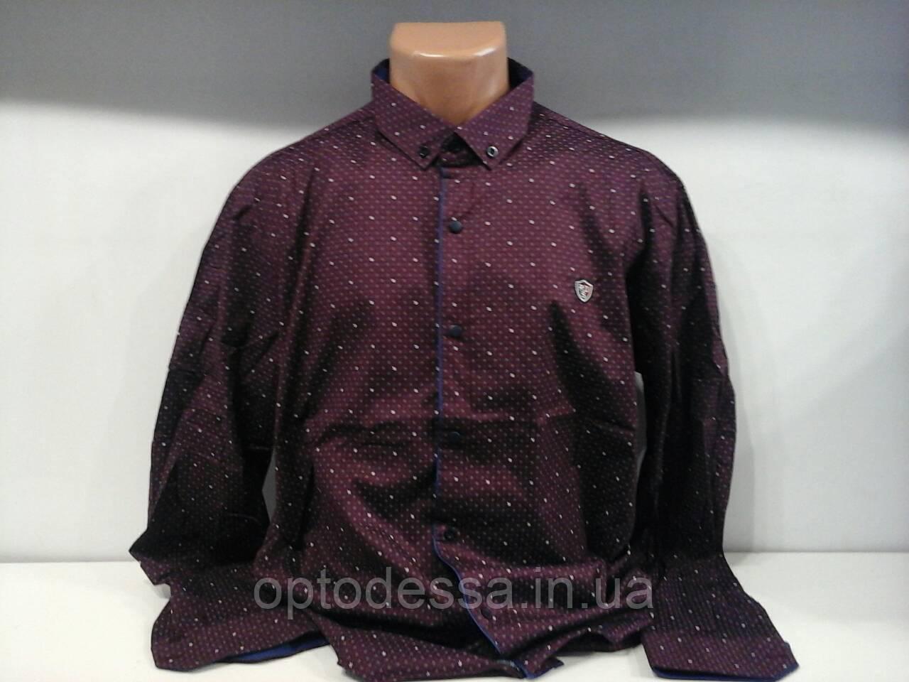 Рубашка мужская БАТАЛ R.D