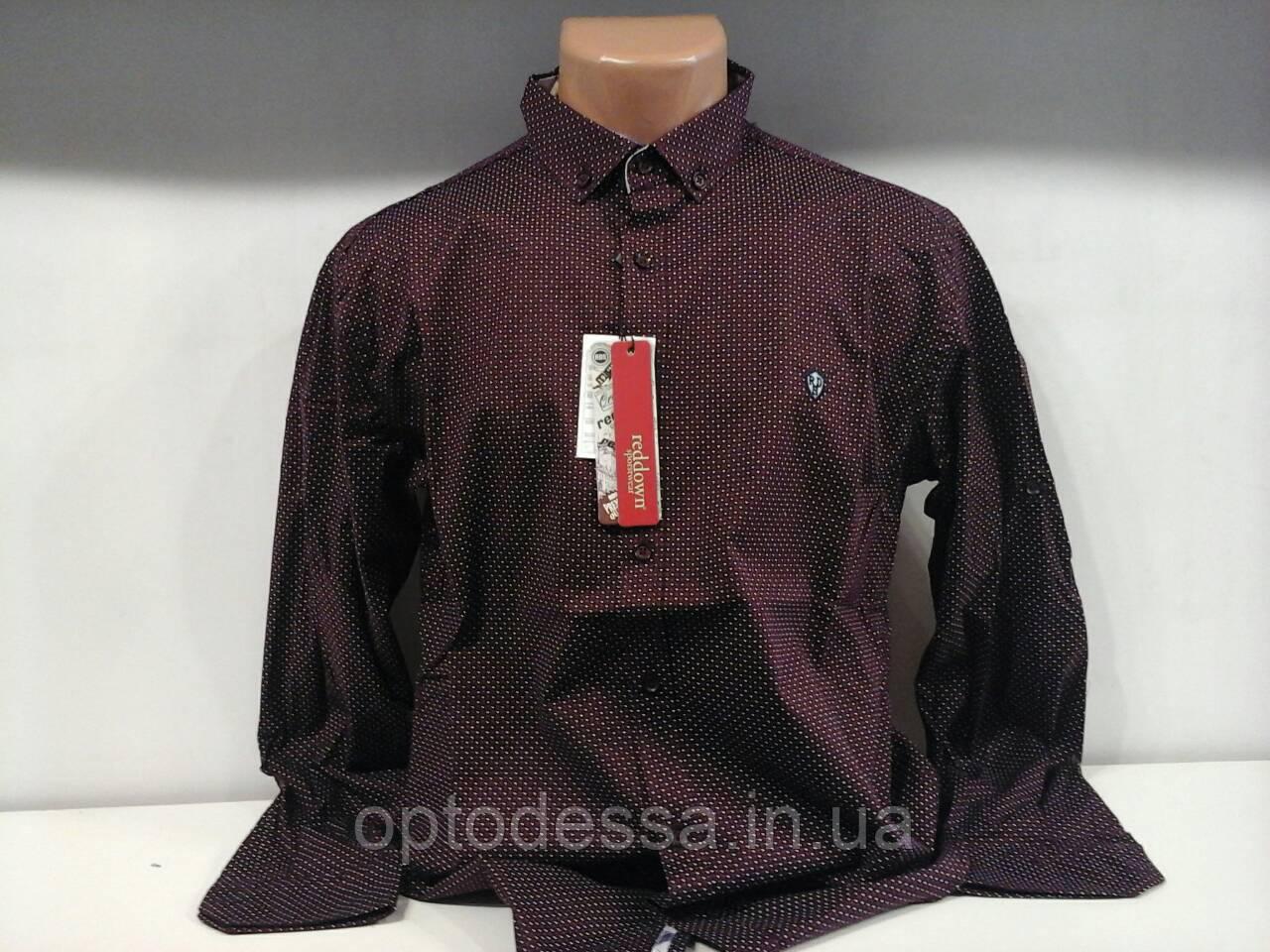 Рубашка мужская R.D
