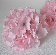 Гортензія головка ніжно рожева велика