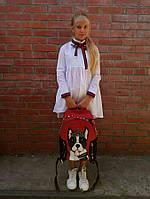 Блузы рубашки школьные, фото 1
