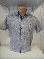 Рубашка мужская Paul Smith короткий рукав, стрейч, заклёпки узор №12.08.2018 002\ купить рубашку
