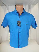 Рубашка мужская Paul Smith короткий рукав, стрейч, заклёпки узор №12.08.2018 003\ купить рубашку