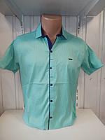 Рубашка мужская Paul Smith короткий рукав, стрейч, заклёпки узор №12.08.2018 004\ купить рубашку