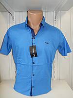 Рубашка мужская Paul Smith короткий рукав, стрейч, заклёпки узор №12.08.2018 005\ купить рубашку