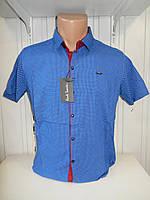 Рубашка мужская Paul Smith короткий рукав, стрейч, заклёпки узор №12.08.2018 006\ купить рубашку