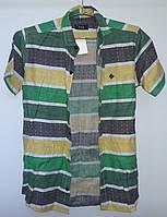Рубашка E&K (М)