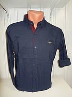 Рубашка мужская SPORT длинный рукав, мелкий узор, стрейч 002 \ купить рубашку