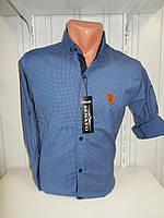 Рубашка мужская SENATOT длинный рукав, мелкий узор, стрейч 006 \ купить рубашку