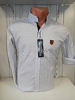 Рубашка мужская SENATOT длинный рукав, мелкий узор, стрейч 008 \ купить рубашку
