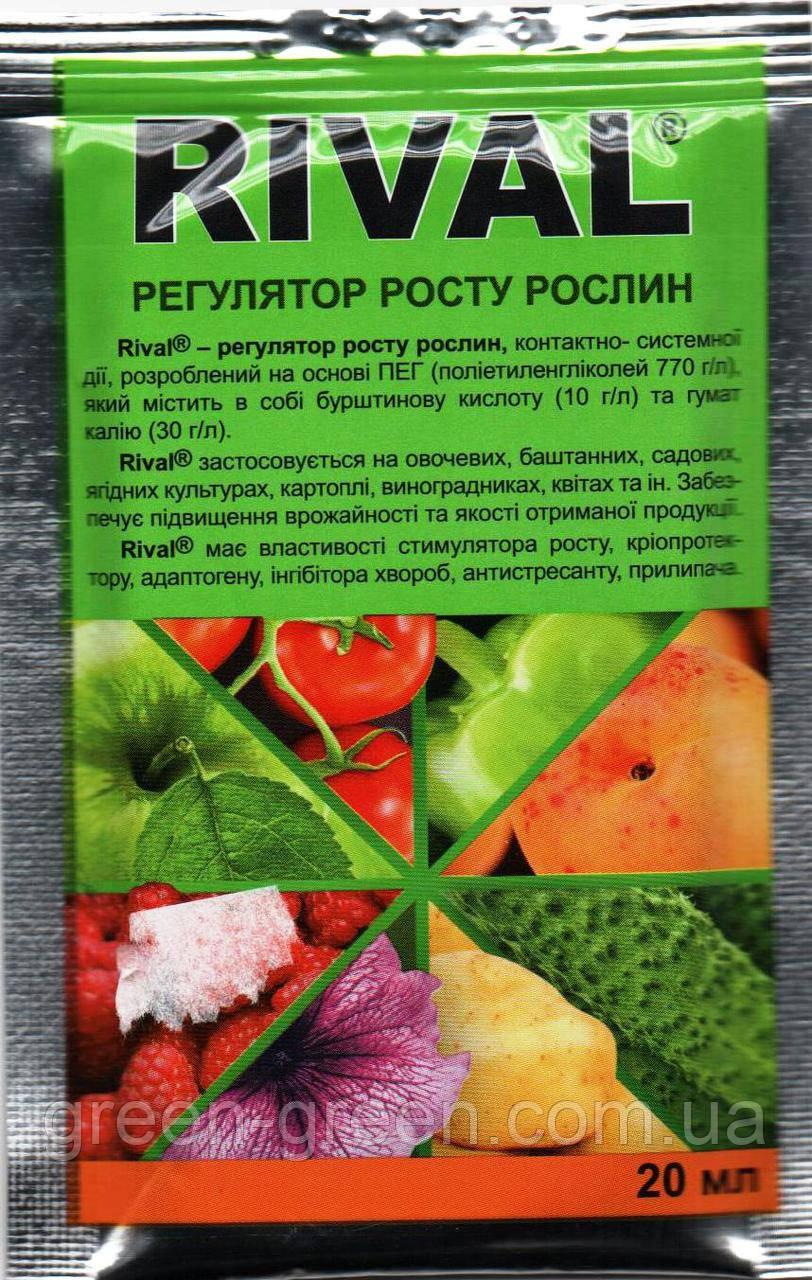 Ривал - регулятор роста растений