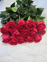 Букет из 25 розовых роз Gotcha, Эквадор