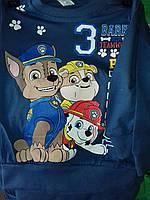 Батник для мальчика на 1-5 лет красного,серого,зеленого,голубого,синего цвета собачий патруль оптом