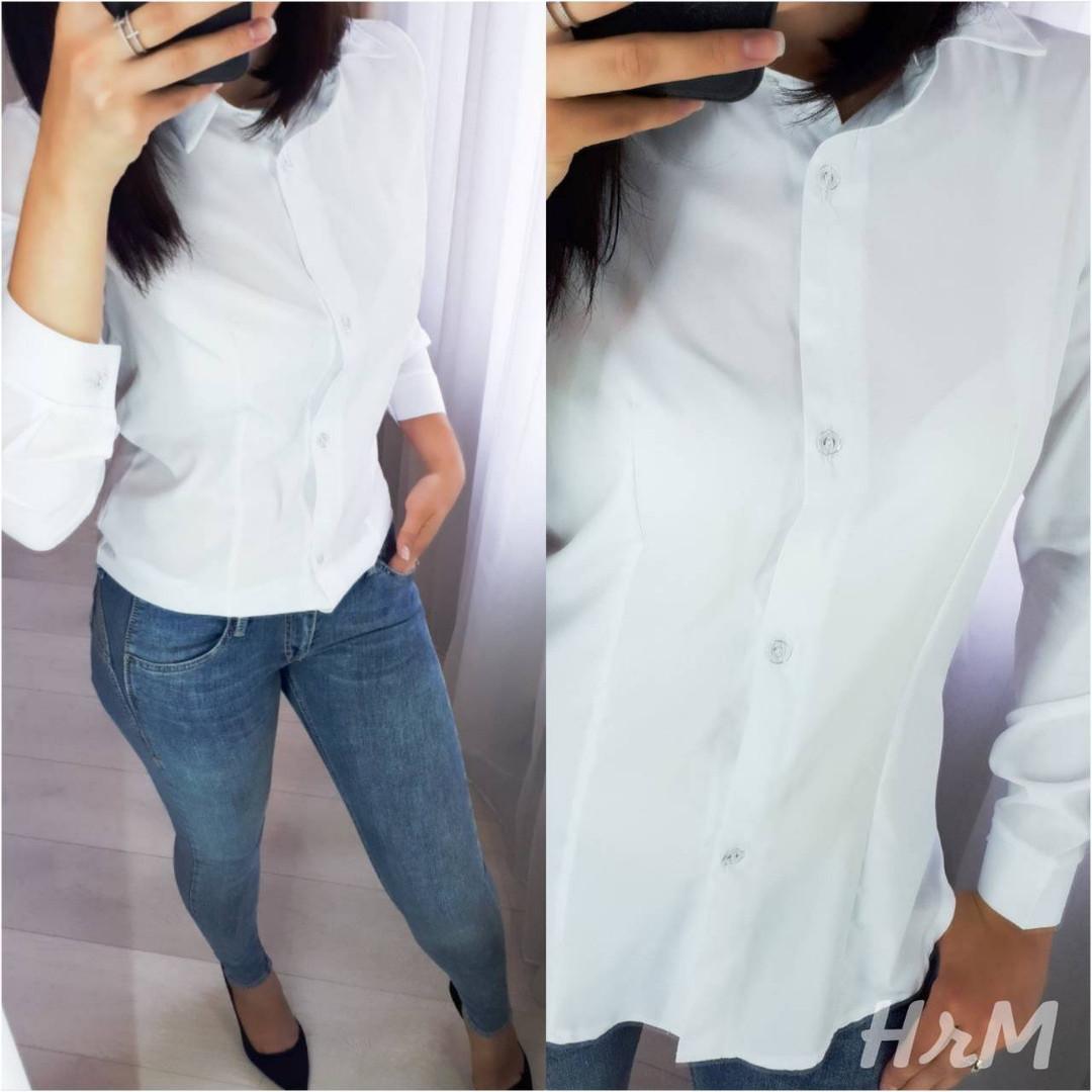 """Классическая женская рубашка  """"Изабель"""" размеры от 42 до 52 белая  код  515/8989"""