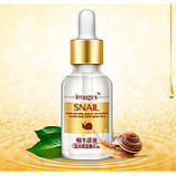 Крем для лица Images Snail с экстрактом слизи улитки и гиалуроновой кислотой  50 ml, фото 4