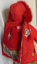 Зимняя куртка парка Совушка, фото 3