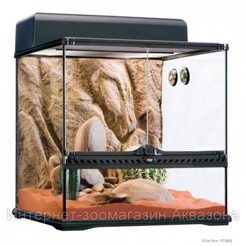 Стеклянный террариум Exo Terra Glas terrarium, 20х20х30 см