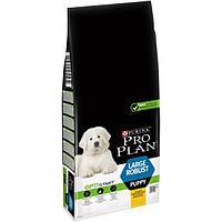 Сухой корм Pro Plan Puppy LARGE Robust для щенков крупных пород с курицей и рисом 12 кг