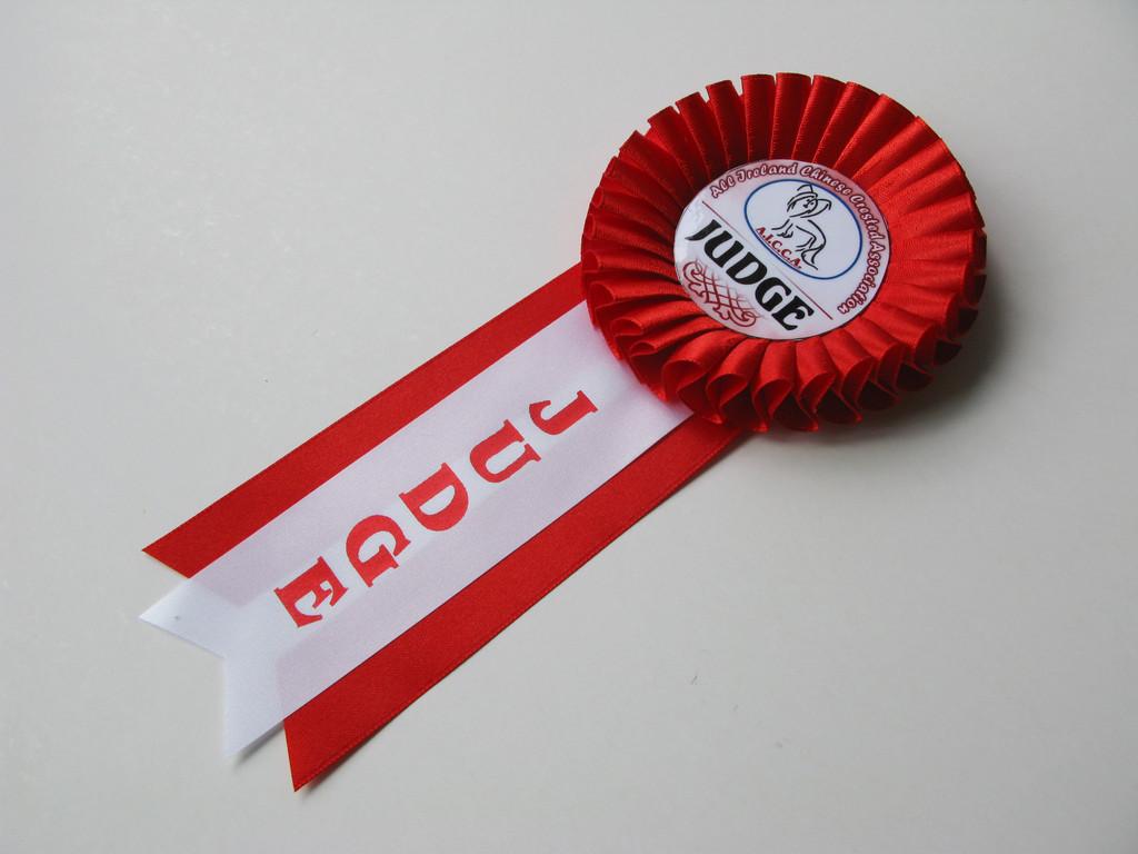 Медаль «Выпускник 2019» — «Эксперт» с надписью.