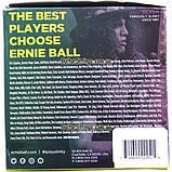 Струны Ernie Ball 2251 Pure Nickel Regular Slinky 10-46, фото 4