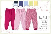 Штаны для новорожденного ШР2 тм Бемби