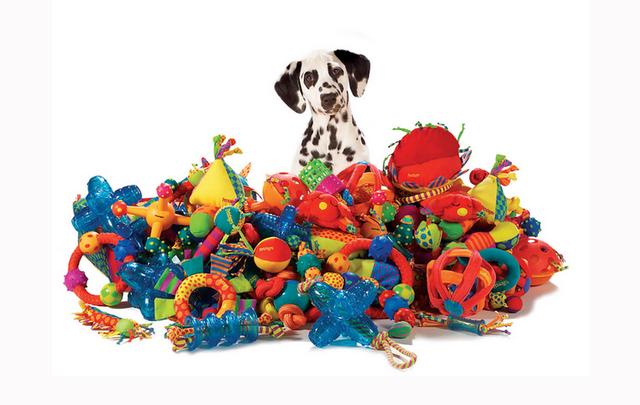 Игрушки, игры для животных