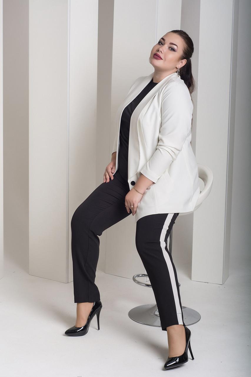 Брючный женский костюм в больших размера с пиджаком 1015946