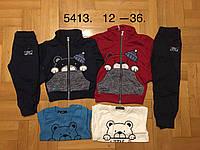 Трикотажный костюм-тройка для мальчиков оптом, F&D ,12-36 мес., арт.5413, фото 1